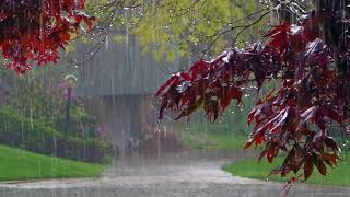 Rain, thunder, thunderstorm Relaxing sounds of nature Sleeping sounds of summer rain