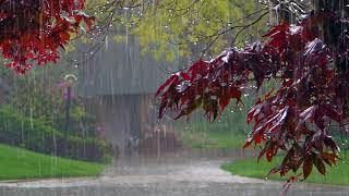 Скачать Дождь гром гроза Расслабляющие звуки природы Усыпляющие звуки летнего дождя