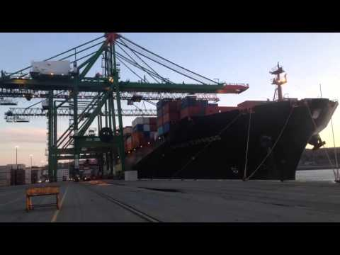 Working the Ningbo Express at Port of Halifax