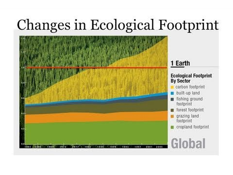 Visualizing Our Ecological Footprint
