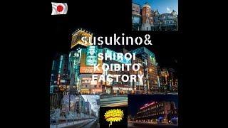 ESCULTURA DE GELO EM SUSUKINO&FABRICA SHIROI KOIBITO|HOKKAIDO|JAPAO thumbnail
