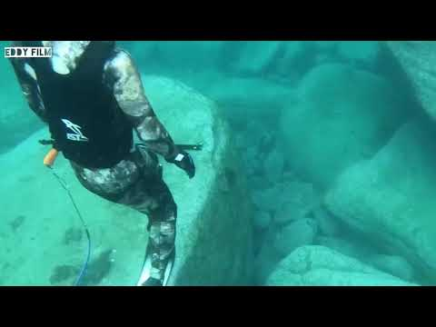 Wattamolla Beach - Spearfishing- Bonito