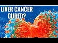 Cure For Liver Cancer?