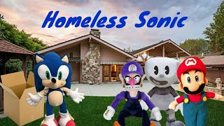 Waluigis World (Homeless Sonic)