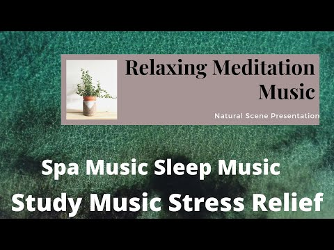 Relaxing Meditation Music Spa Music Sleep Music Study Music Stress Relief