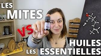 LES MITES VESTIMENTAIRES - Remède naturel aux huiles essentielles