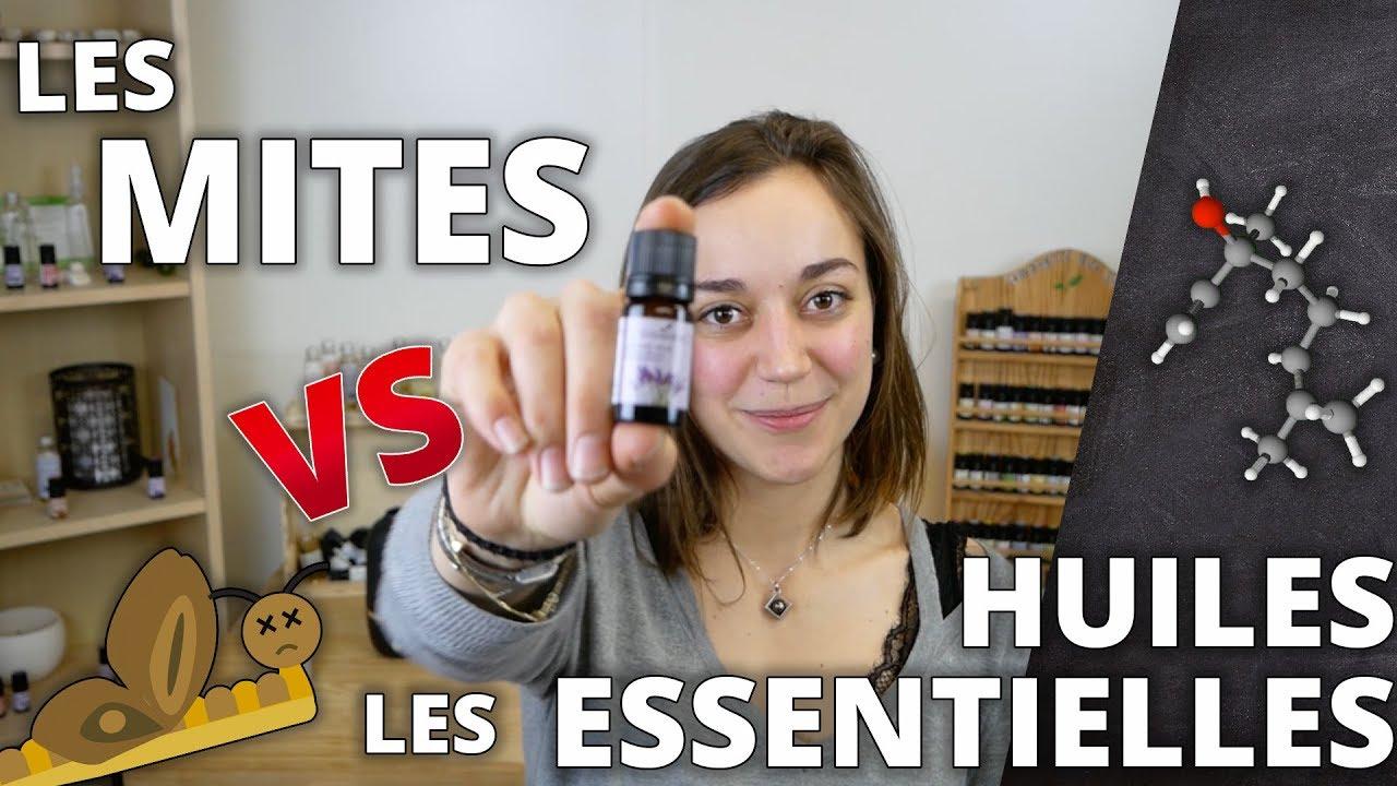 Comment Traiter Les Mites Dans Les Armoires les mites vestimentaires - remède naturel aux huiles essentielles