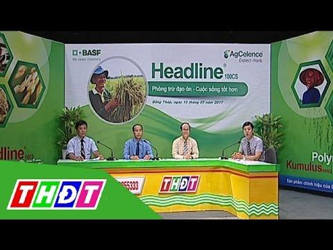 Tư vấn khuyến nông 16/5/2017 | Cty BASF Việt Nam | THDT
