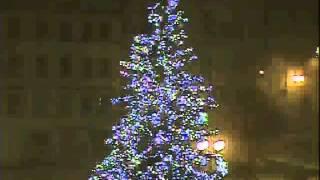 Jak vichřice zamávala s Vánočním stromem