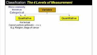 Variables and How to Classify Them