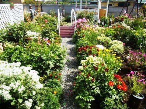 Благоустройство сада и огорода