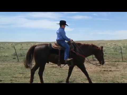 The Original Marlboro Man