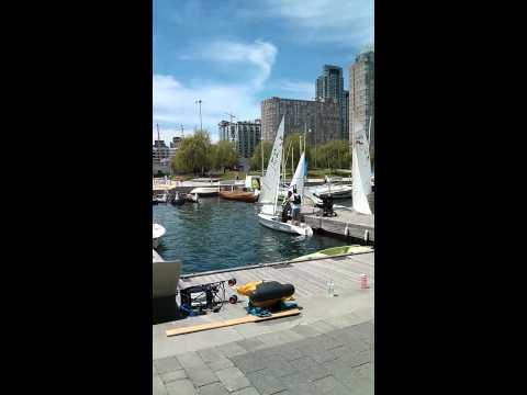 Toronto Harbor Marina