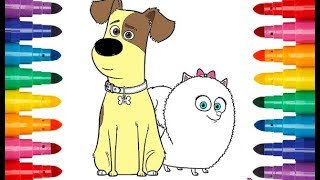 The Secret Life of Pets 2 cartooon coloring Тайная жизнь домашних животных 2 мультик раскраска