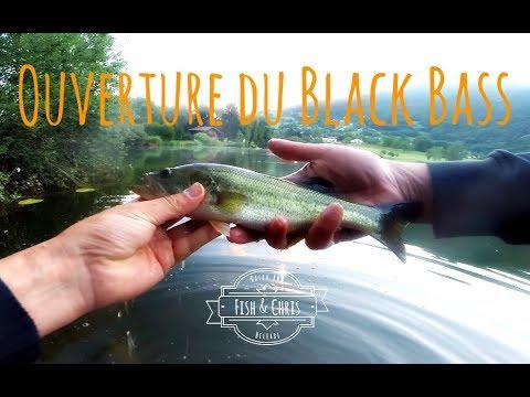 Ouverture du BLACK-BASS en HAUTE-SAVOIE : Petit mais Costaud !!