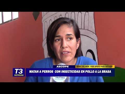 MATAN A PERROS CON INSECTICIDAS EN POLLO A LA BRASA
