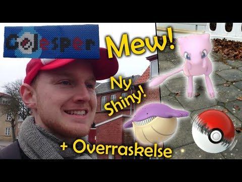 Ny shiny! Fanger Mew! og Overraskelse! (Dansk Pokémon GO)