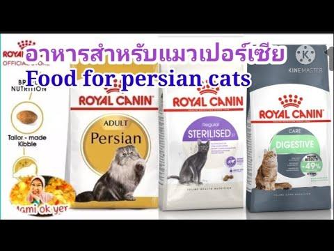 อาหารสำหรับแมวเปอร์เซียRoyal Canin