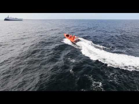 Seismic Life : WG Amundsen