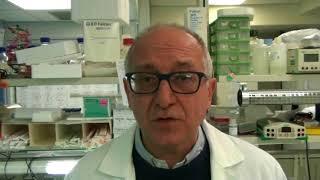 Research news Num. 0: Leucemia linfoblastica del bambino