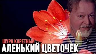 pasha-karetniy-luka-mudishev-dryablie-zhenshini-foto