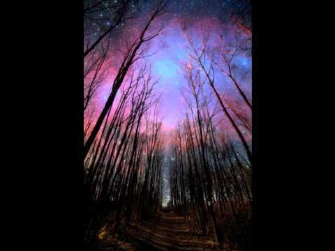 The Woods Instrumental Original