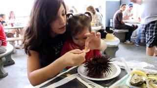 Eating Sea Urchin (Uni)