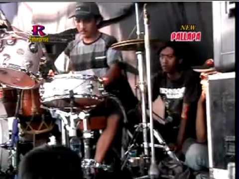 New palapa - Layang suoro live in gamand