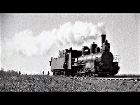 Турксиб (Стальной путь) 1929 / Turksib