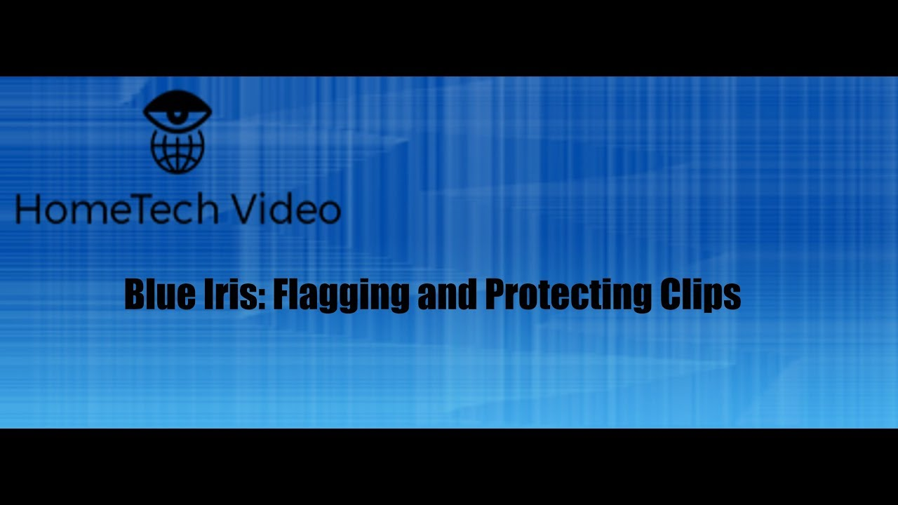 Blue Iris - Flagging and Protecting Clips