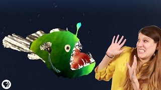 Why Do Deep Sea Creatures Look So Scary