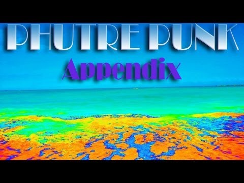 Phuture Punk - Appendix