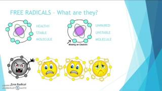 What is Oxidative Stress, Free Radicals & Antioxidants   Katie Rose