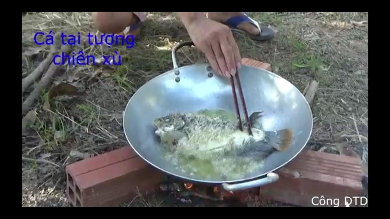 Câu cá Tai tượng chiên xù chấm nước mắm me. Ăn uống no say. Auricaceae - cuisine.#Congdtd