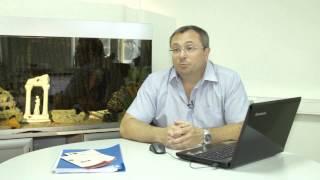 видео Сервитут на землю: понятие, основания возникновения и прекращения