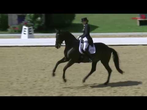 CDI4* Schindlhof 2016 - 1. Platz Dorothee  Schneider, Competition 01 Prix St. Georges