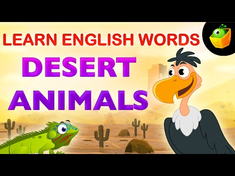 Desert Animals - Pre School - Learn English Words (Spelling) Video For Kids and Toddlers thumbnail
