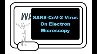 What Does SARS-CoV-2 Look Like? Electron Microscopy Of The Virus In Heart, Lung, And Kidney Tissues