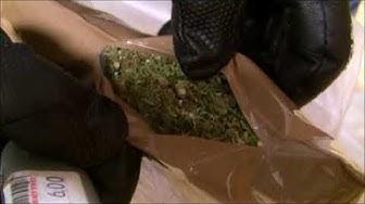 Kannabispsykoosi