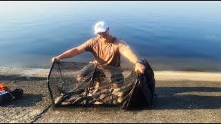 Ночная рыбалка на фидер Открываем сезон Ловля леща на Вилейке