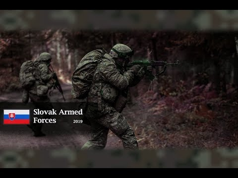 Slovak Armed Forces²⁰¹⁹ x Military motivation