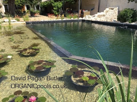 How to build an Natural:Organic Pool in France