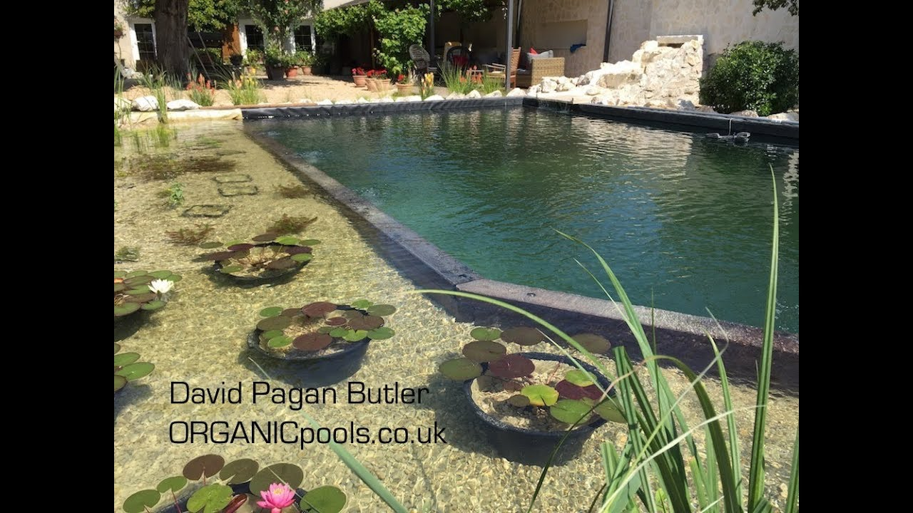How to build an Natural:Organic Pool in France - YouTube