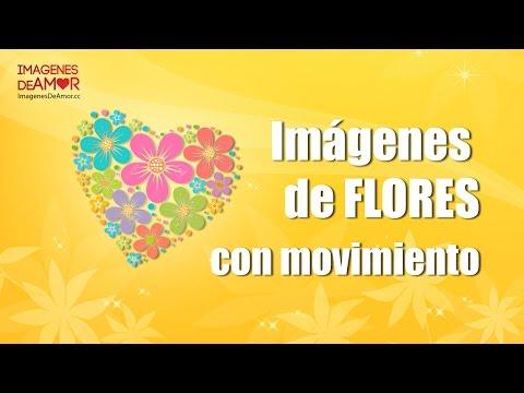 7 Im�genes de flores con movimiento y brillo para descargar