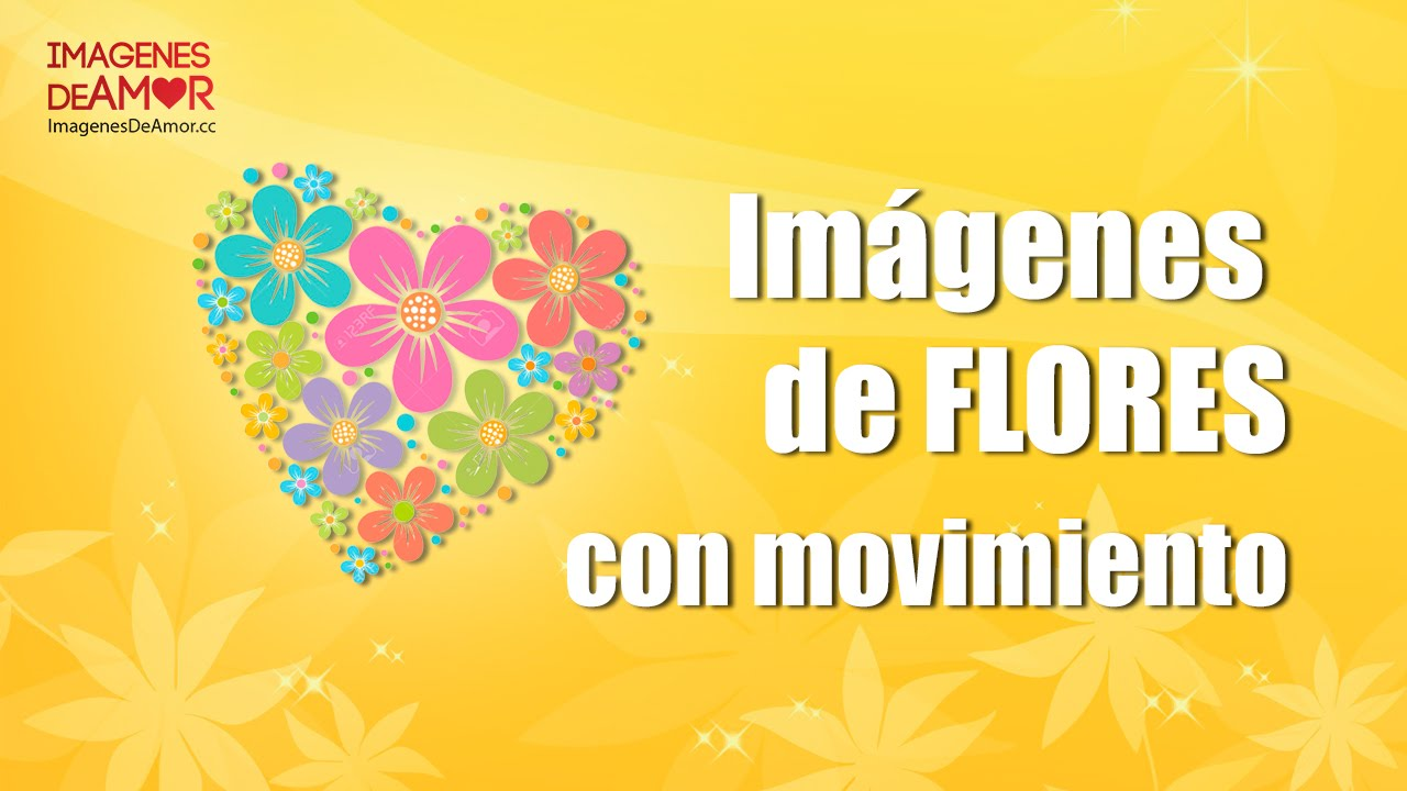 7 Imagenes De Flores Con Movimiento Y Brillo Para Descargar Youtube