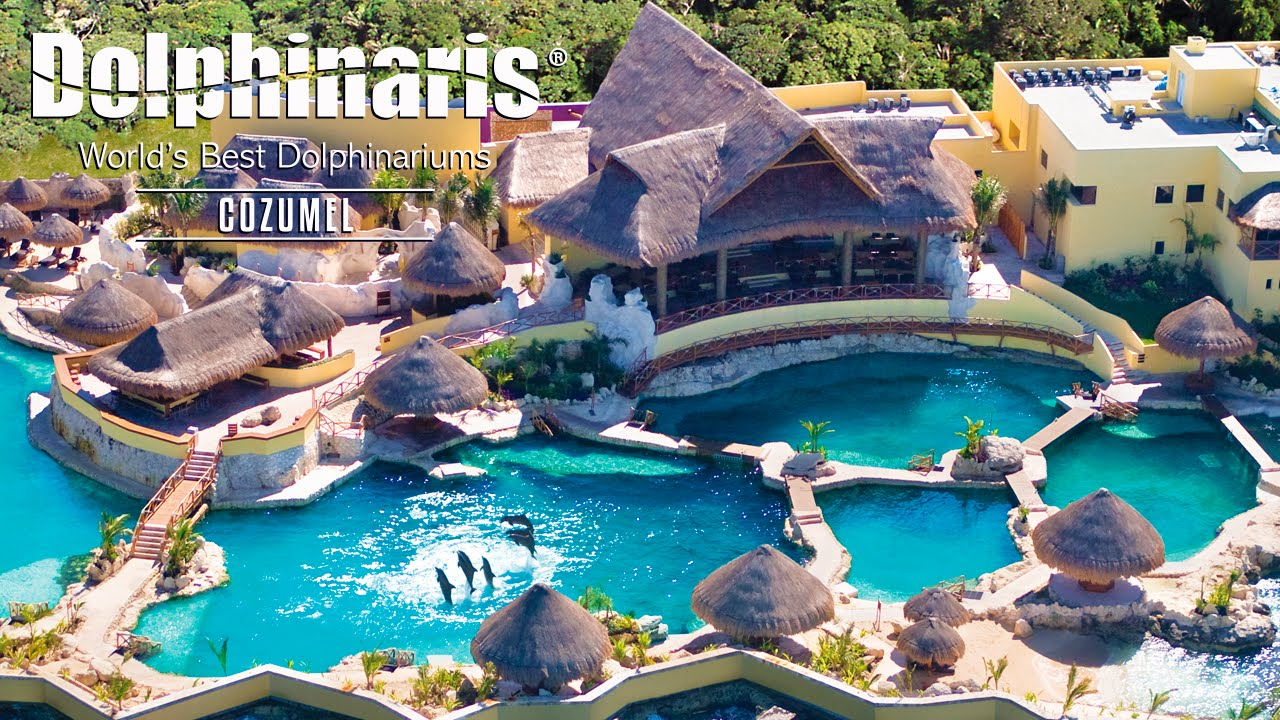 Locations Mexico Cozumel All Resorts Inclusive