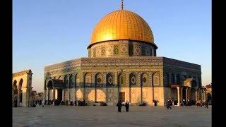 مصر العربية   فلسطين.. قضية لا تسقط بالتقادم