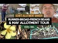 Sean's Allotment Garden 51: May Tour & Beans (Runner, Broad, French)