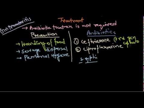 Salmonella treatment