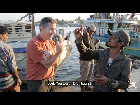 Sri Lanka: Negombo Fish Market